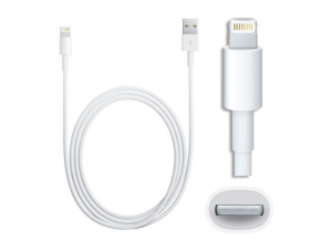 10Ft iPhone 5 iPad Mini Lightning USB Cable